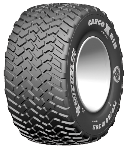 Шина Michelin IMPLEMENT 560/60R22.5 CARGOXBIB HD